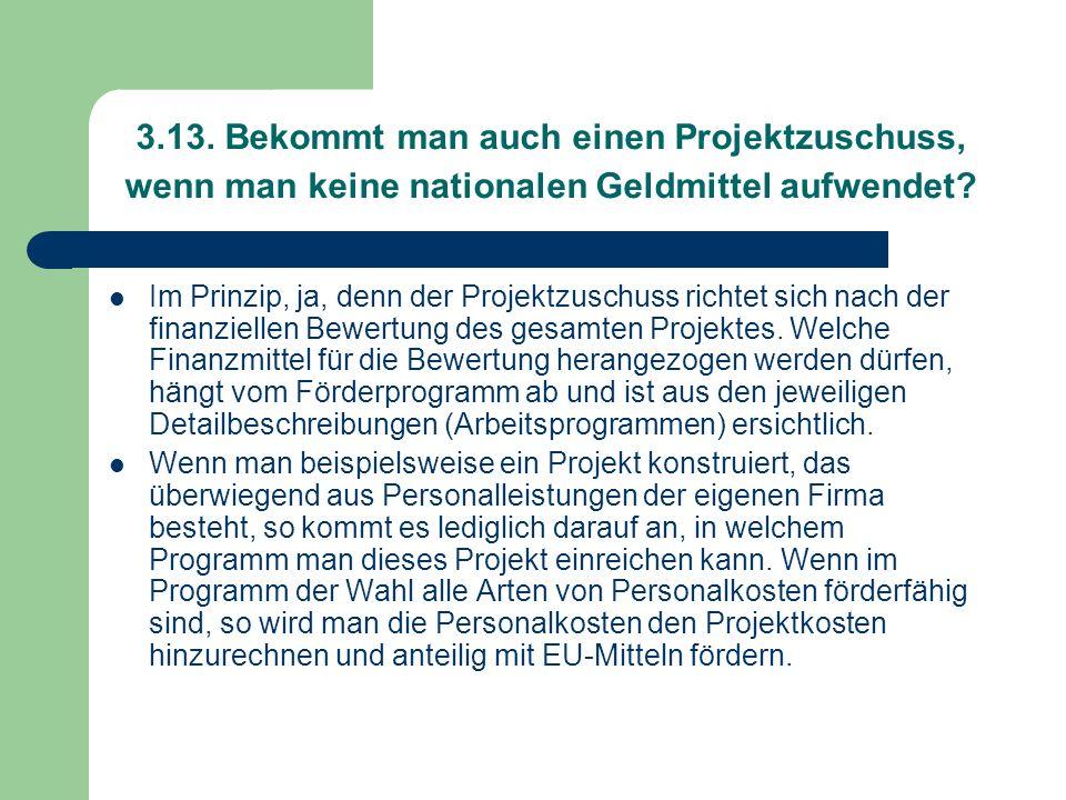 3.13. Bekommt man auch einen Projektzuschuss, wenn man keine nationalen Geldmittel aufwendet? Im Prinzip, ja, denn der Projektzuschuss richtet sich na