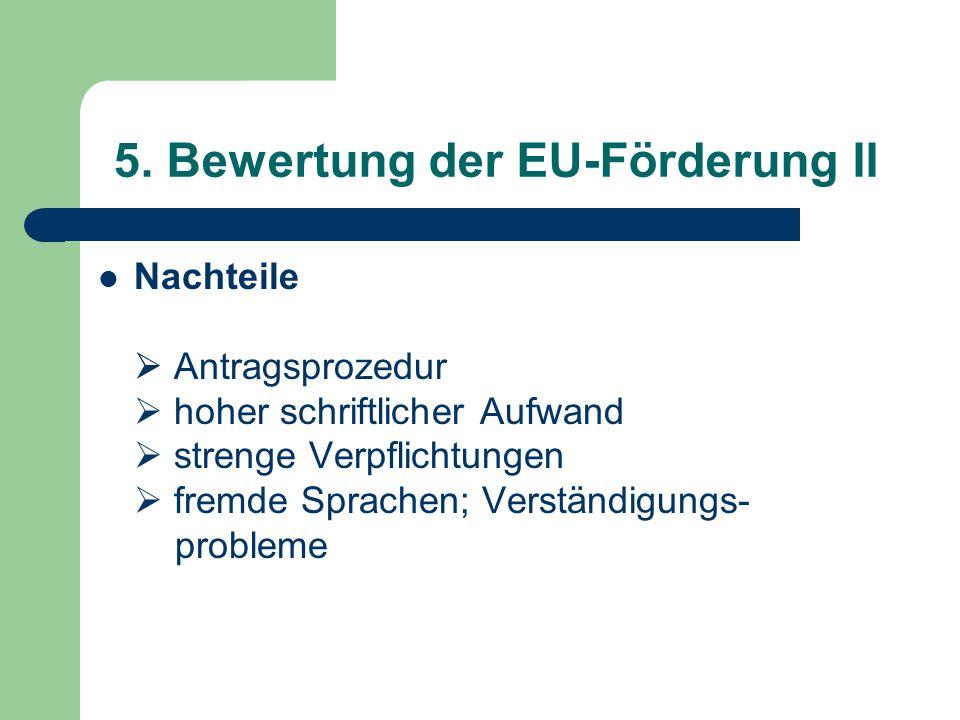 5. Bewertung der EU-Förderung II Nachteile Antragsprozedur hoher schriftlicher Aufwand strenge Verpflichtungen fremde Sprachen; Verständigungs- proble