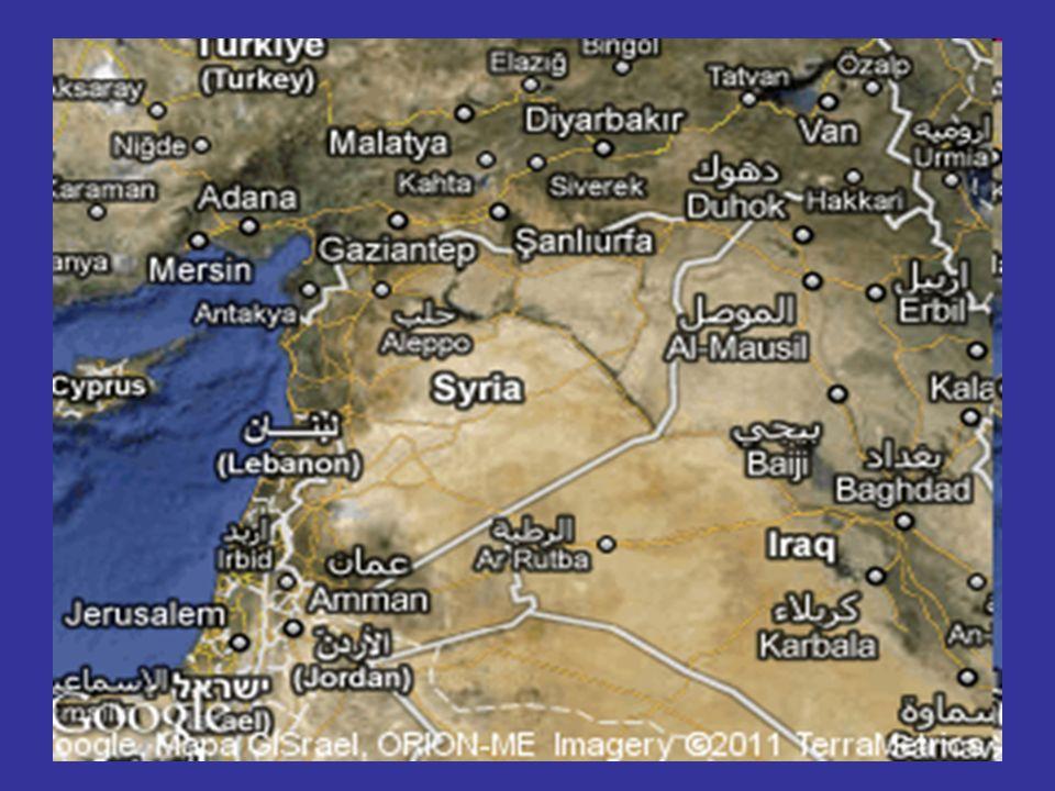Was tun wir (nicht) (2) Stattdessen Politik der Sanktionen - Ölembargo - Einreiseverbote für Assad-Clan - Einfrieren von Vermögen in Europa - Unterbindung des Zugangs syrischer Banken zum europäischen Bankensystem in der Hoffnung, dass Assad irgendwann das Geld ausgeht