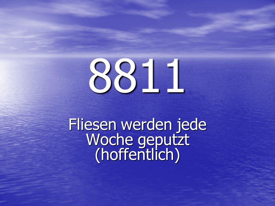 8811 Fliesen werden jede Woche geputzt (hoffentlich)