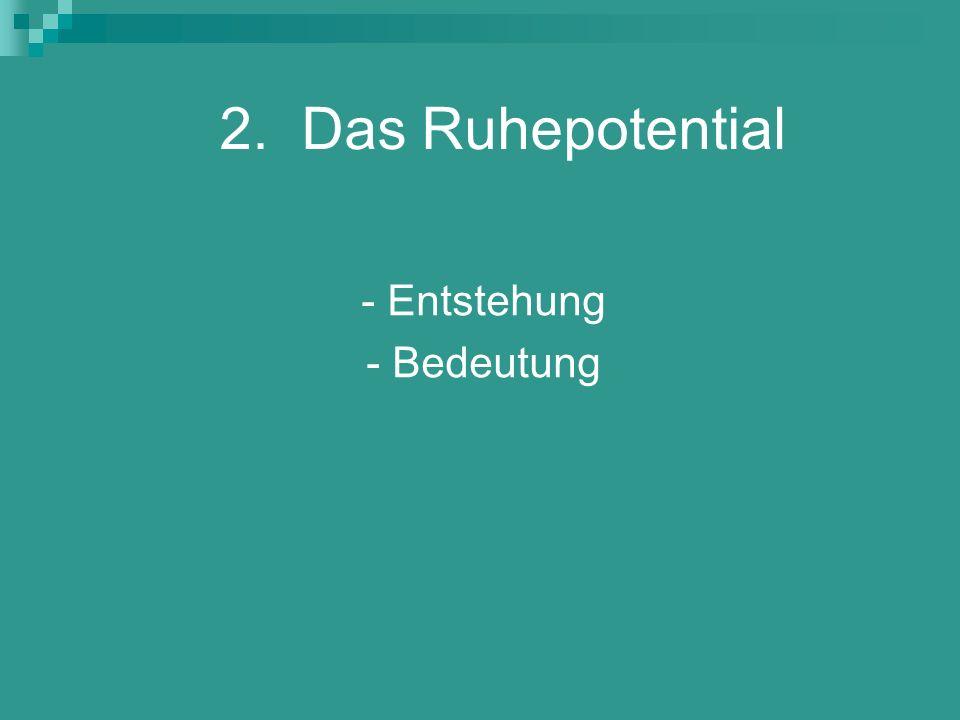2. Das Ruhepotential - Entstehung - Bedeutung