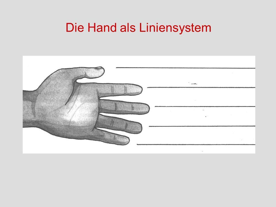 Die Hand als Liniensystem