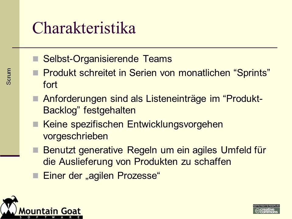 Charakteristika Selbst-Organisierende Teams Produkt schreitet in Serien von monatlichen Sprints fort Anforderungen sind als Listeneinträge im Produkt-