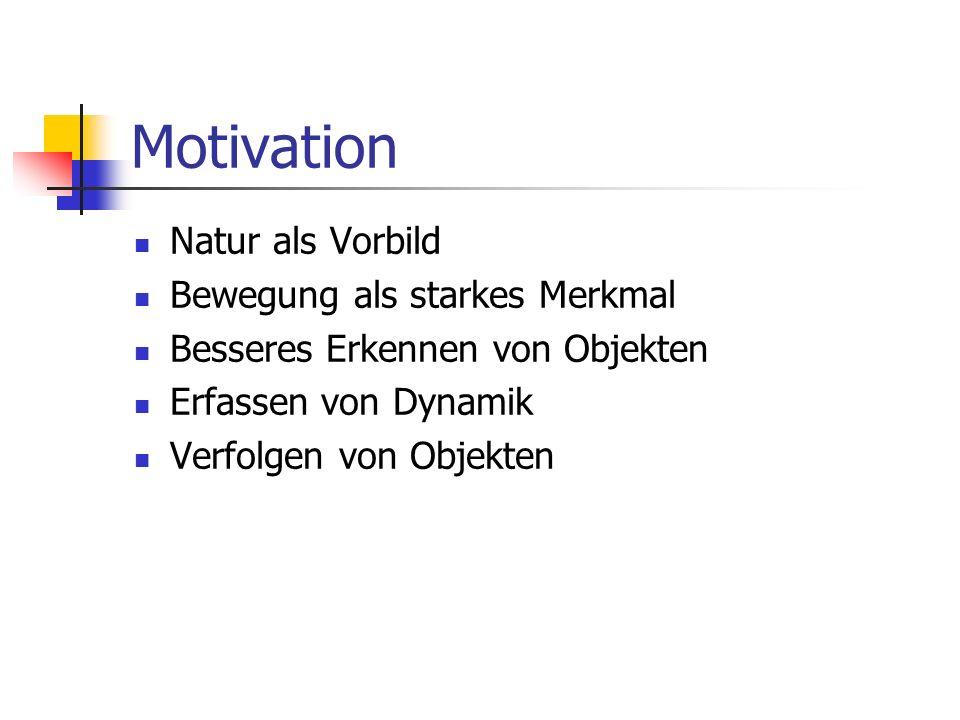 Motivation Natur als Vorbild Bewegung als starkes Merkmal Besseres Erkennen von Objekten Erfassen von Dynamik Verfolgen von Objekten