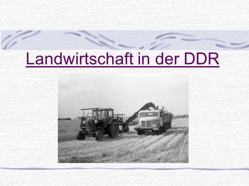 Landwirtschaft in der DDR
