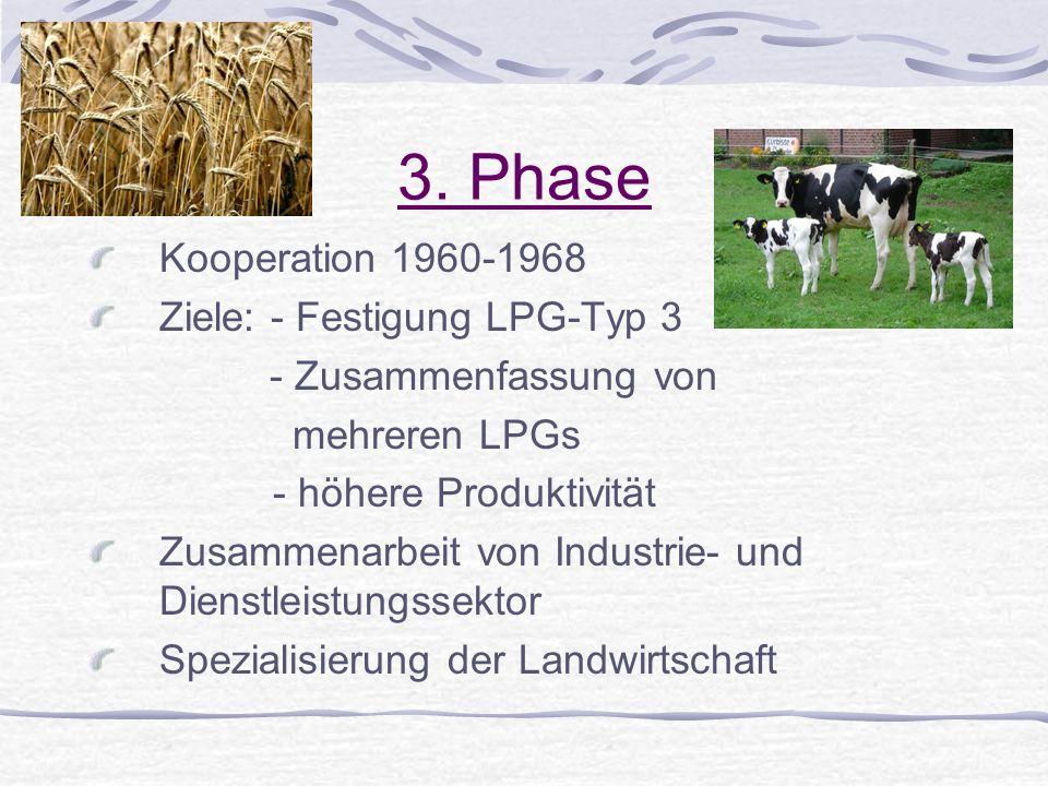 3. Phase Kooperation 1960-1968 Ziele: - Festigung LPG-Typ 3 - Zusammenfassung von mehreren LPGs - höhere Produktivität Zusammenarbeit von Industrie- u