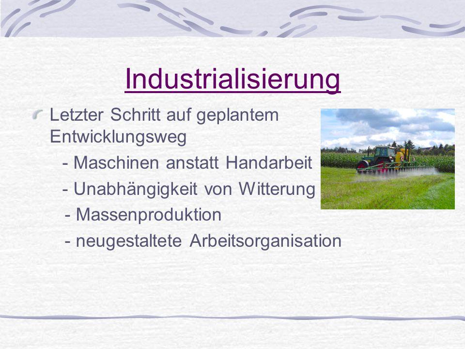 Industrialisierung Letzter Schritt auf geplantem Entwicklungsweg - Maschinen anstatt Handarbeit - Unabhängigkeit von Witterung - Massenproduktion - ne