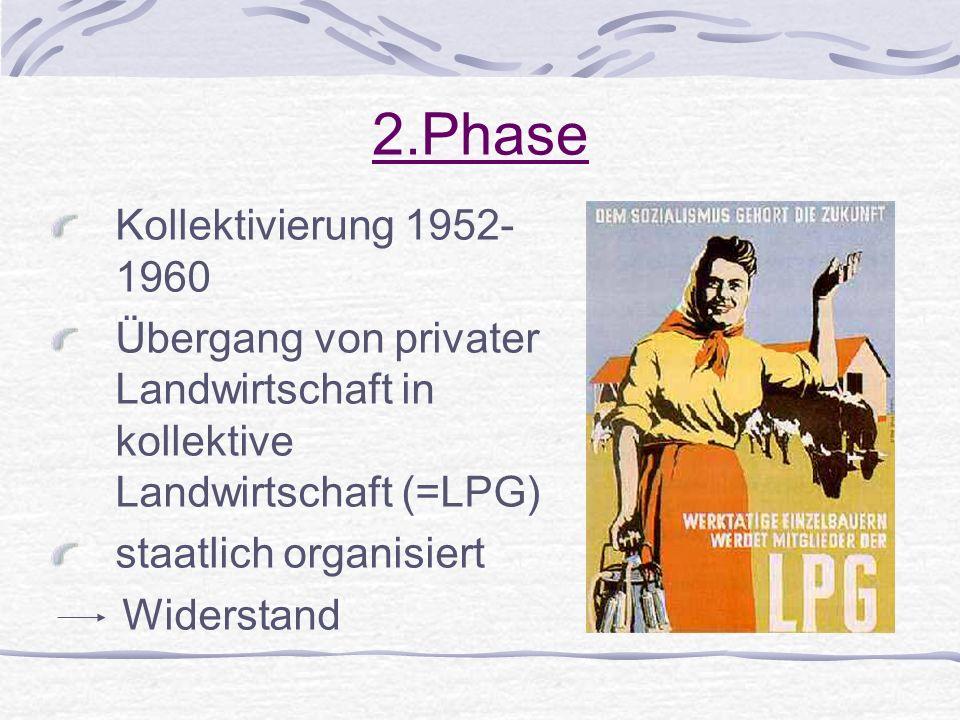 2.Phase Kollektivierung 1952- 1960 Übergang von privater Landwirtschaft in kollektive Landwirtschaft (=LPG) staatlich organisiert Widerstand