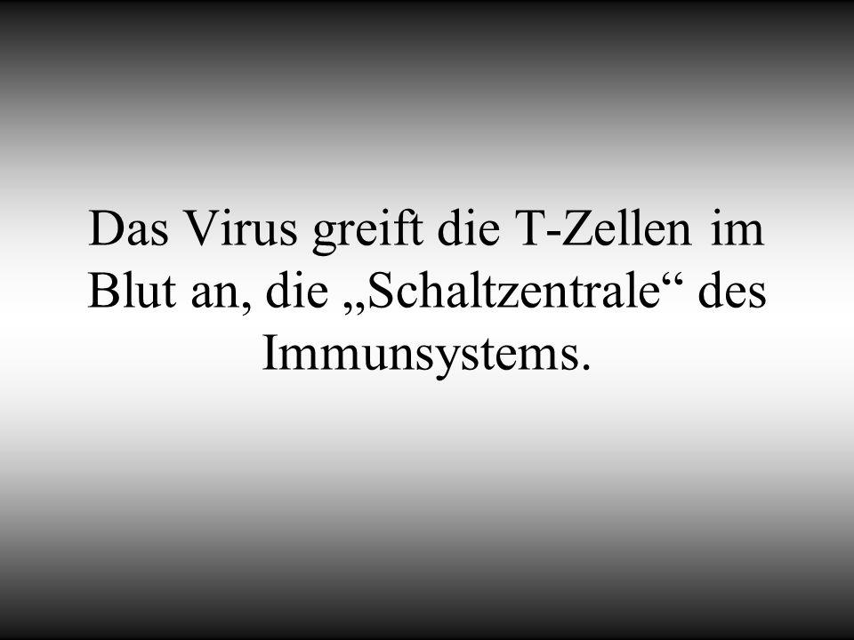 Das Virus greift die T-Zellen im Blut an, die Schaltzentrale des Immunsystems.