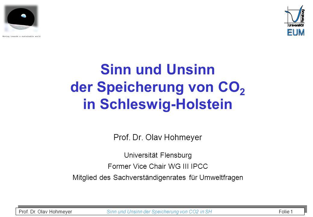 Prof. Dr. Olav Hohmeyer Sinn und Unsinn der Speicherung von CO2 in SH Folie 1 Sinn und Unsinn der Speicherung von CO 2 in Schleswig-Holstein Prof. Dr.