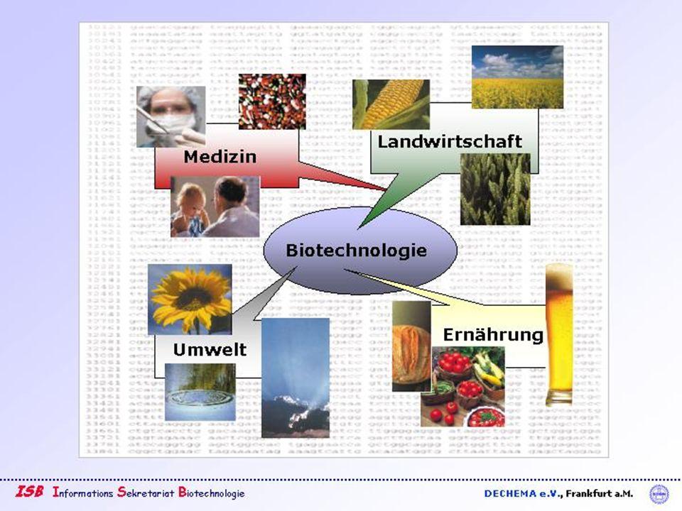 Dr.Barbara Hansen, FH Lausitz Was sind Stammzellen und warum sind sie so wichtig.