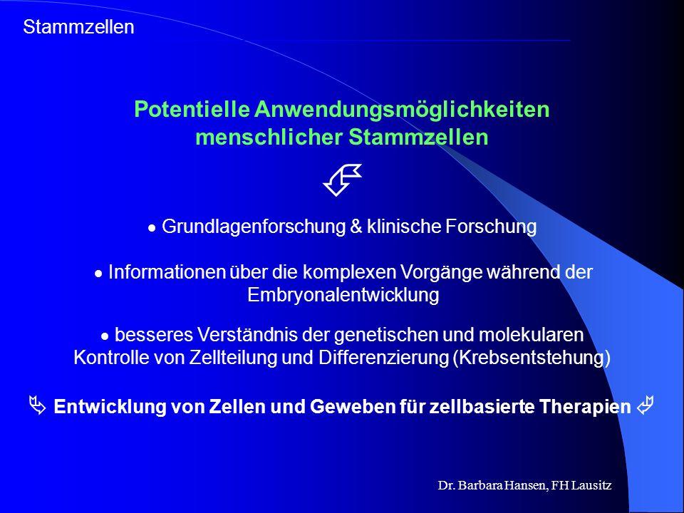 Dr. Barbara Hansen, FH Lausitz Stammzellen – eine Gegenüberstellung embryonale Gefahr der Krebsentstehung nur allogen anwendbar Problem der Transplant