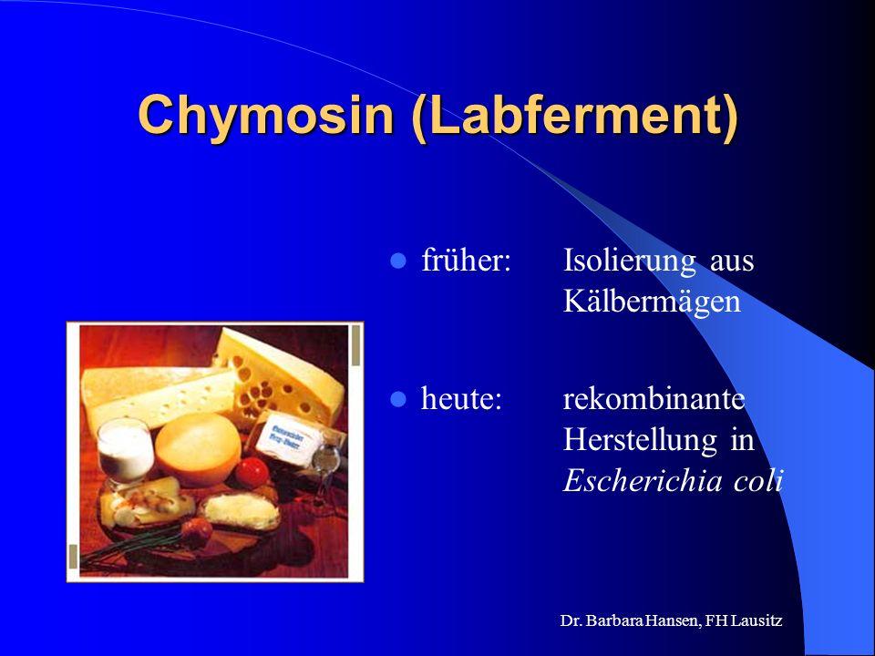 Chymosin (Labferment) früher:Isolierung aus Kälbermägen heute: rekombinante Herstellung in Escherichia coli