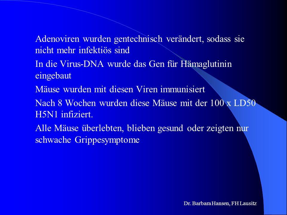 Dr. Barbara Hansen, FH Lausitz Adenovirus