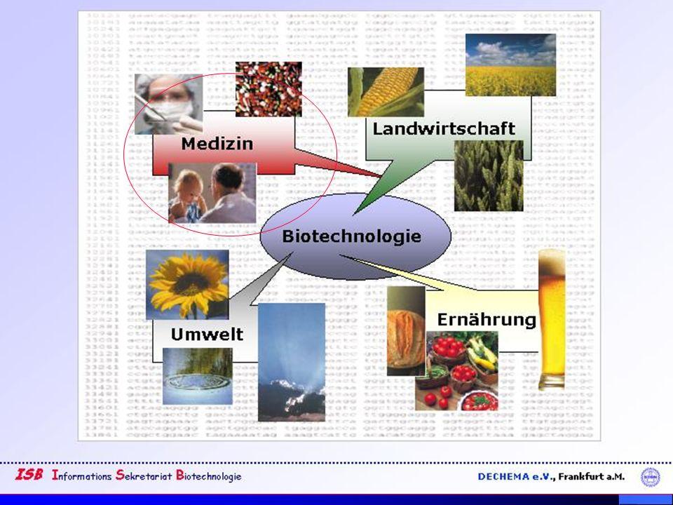 Dr.Barbara Hansen, FH Lausitz Wie sieht Erythropoetin aus.