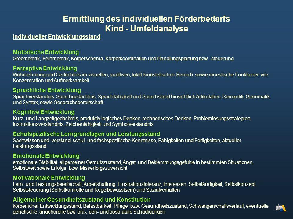 Ermittlung des individuellen Förderbedarfs Kind - Umfeldanalyse Individueller Entwicklungsstand Motorische Entwicklung Grobmotorik, Feinmotorik, Körpe
