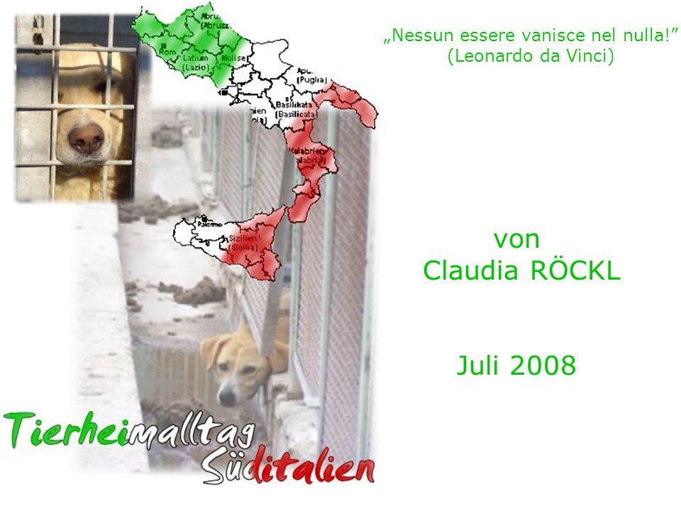 März – August 2005 Hundeleben in Rieti - es ändert sich die Form, nicht aber die Substanz.