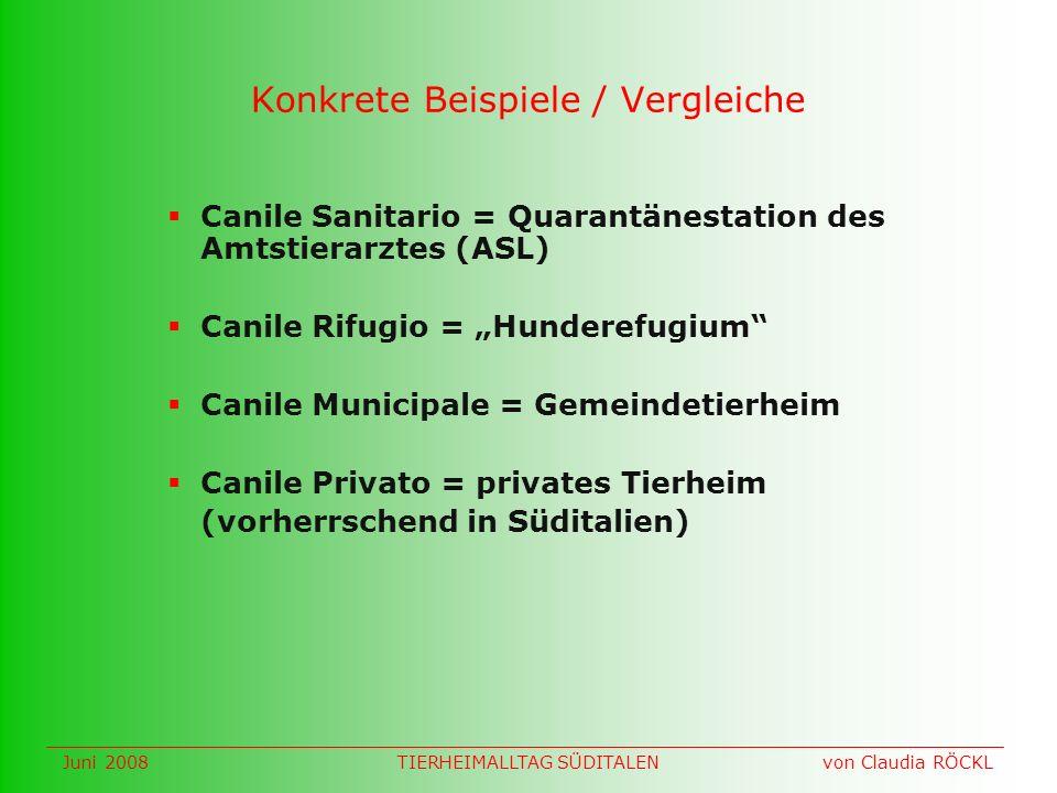 Konkrete Beispiele / Vergleiche Canile Sanitario = Quarantänestation des Amtstierarztes (ASL) Canile Rifugio = Hunderefugium Canile Municipale = Gemei