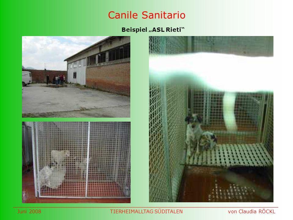 Canile Sanitario Beispiel ASL Rieti Juni 2008 von Claudia RÖCKLTIERHEIMALLTAG SÜDITALEN
