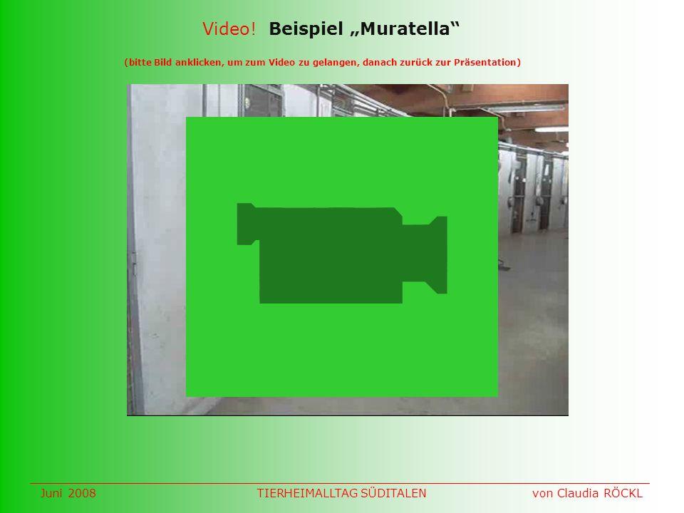 (bitte Bild anklicken, um zum Video zu gelangen, danach zurück zur Präsentation) Video.