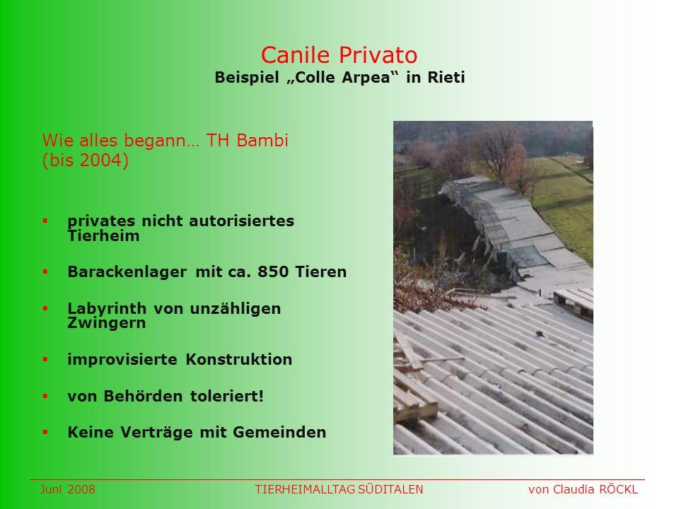 Canile Privato Beispiel Colle Arpea in Rieti privates nicht autorisiertes Tierheim Barackenlager mit ca.