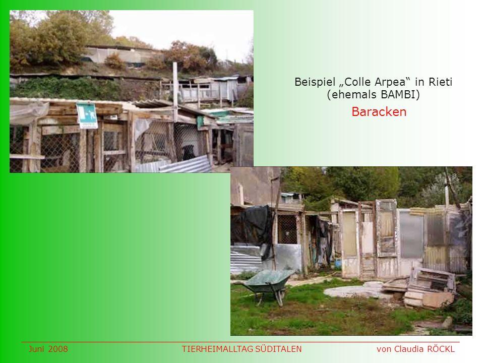 Baracken Beispiel Colle Arpea in Rieti (ehemals BAMBI) Juni 2008 von Claudia RÖCKLTIERHEIMALLTAG SÜDITALEN