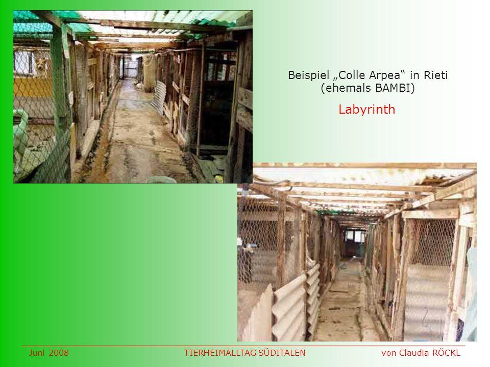 Labyrinth Beispiel Colle Arpea in Rieti (ehemals BAMBI) Juni 2008 von Claudia RÖCKLTIERHEIMALLTAG SÜDITALEN