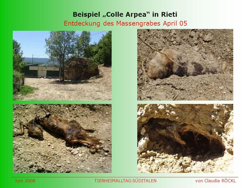 Entdeckung des Massengrabes April 05 Beispiel Colle Arpea in Rieti Juni 2008 von Claudia RÖCKLTIERHEIMALLTAG SÜDITALEN