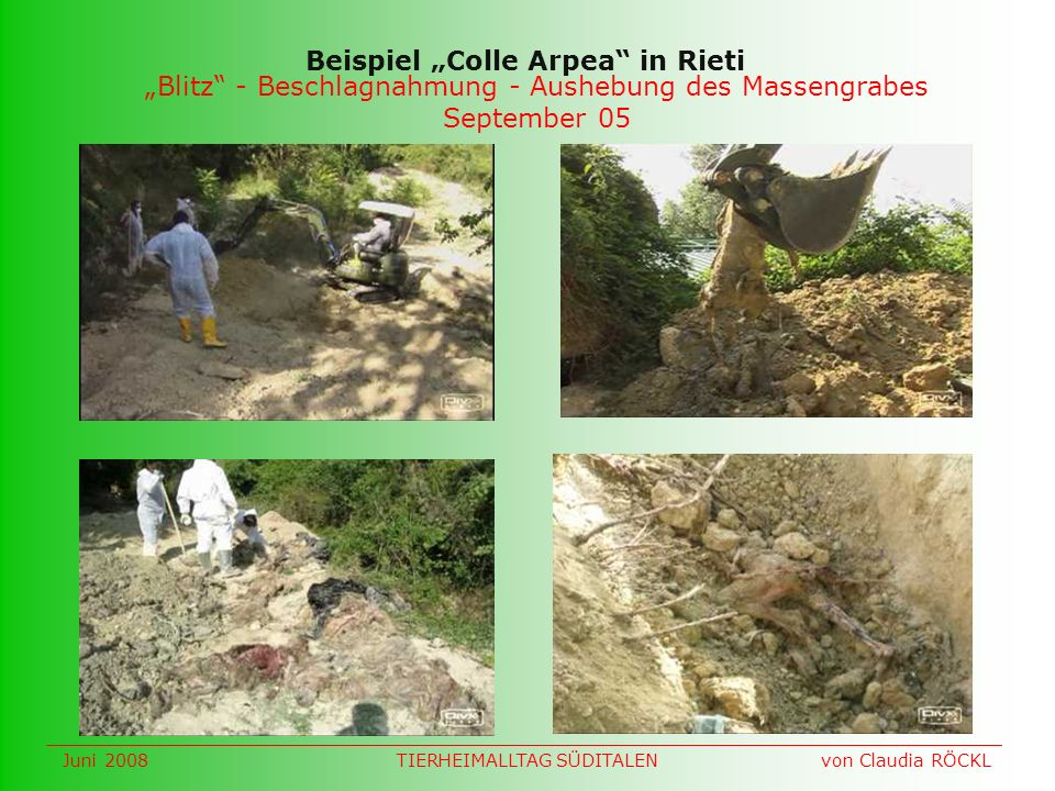 Blitz - Beschlagnahmung - Aushebung des Massengrabes September 05 Beispiel Colle Arpea in Rieti Juni 2008 von Claudia RÖCKLTIERHEIMALLTAG SÜDITALEN