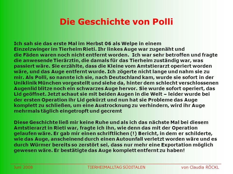 Die Geschichte von Polli Ich sah sie das erste Mal im Herbst 06 als Welpe in einem Einzelzwinger im Tierheim Rieti.
