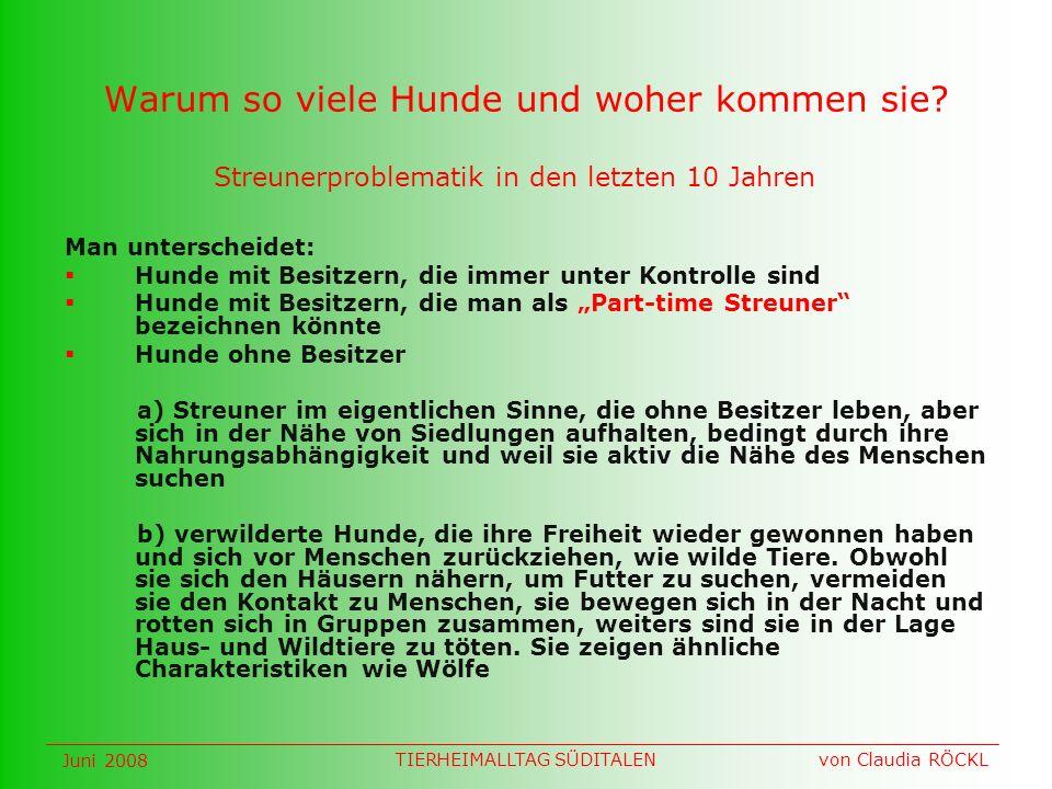 Welpen Juni 2008 von Claudia RÖCKLTIERHEIMALLTAG SÜDITALEN
