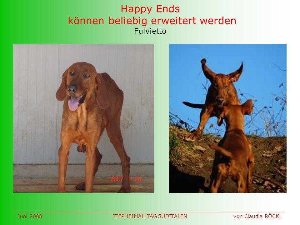 Fulvietto Happy Ends können beliebig erweitert werden Juni 2008 von Claudia RÖCKLTIERHEIMALLTAG SÜDITALEN