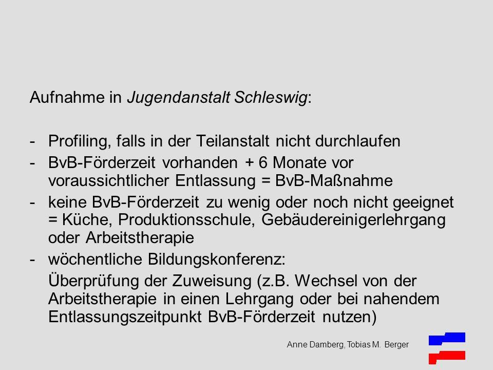 Anne Damberg, Tobias M. Berger Aufnahme in Jugendanstalt Schleswig: -Profiling, falls in der Teilanstalt nicht durchlaufen -BvB-Förderzeit vorhanden +