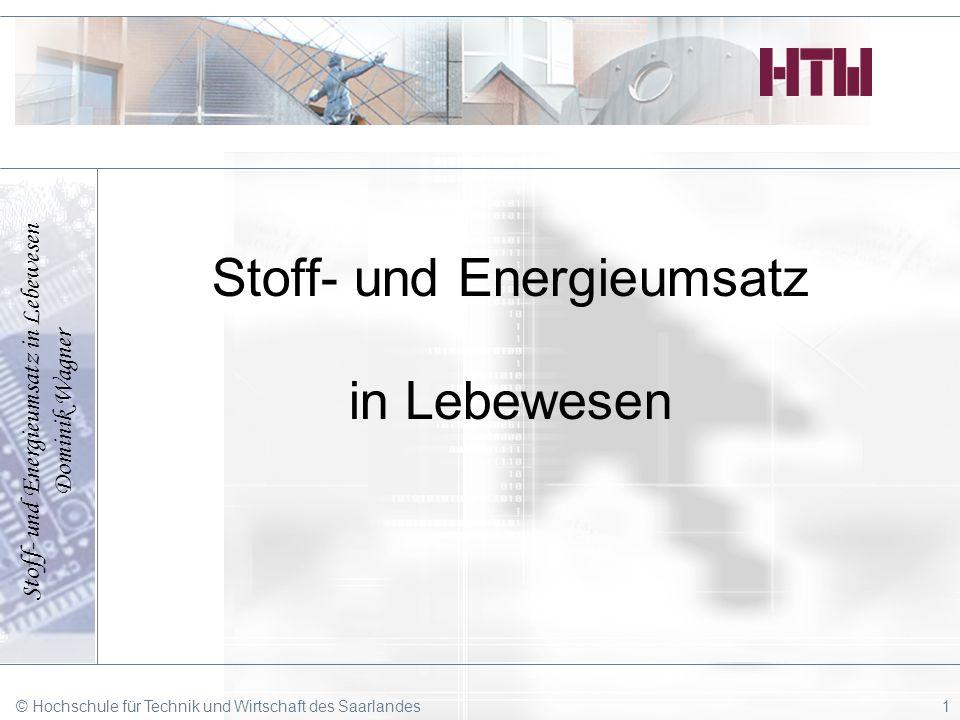 Stoff- und Energieumsatz in Lebewesen Dominik Wagner © Hochschule für Technik und Wirtschaft des Saarlandes1 Stoff- und Energieumsatz in Lebewesen