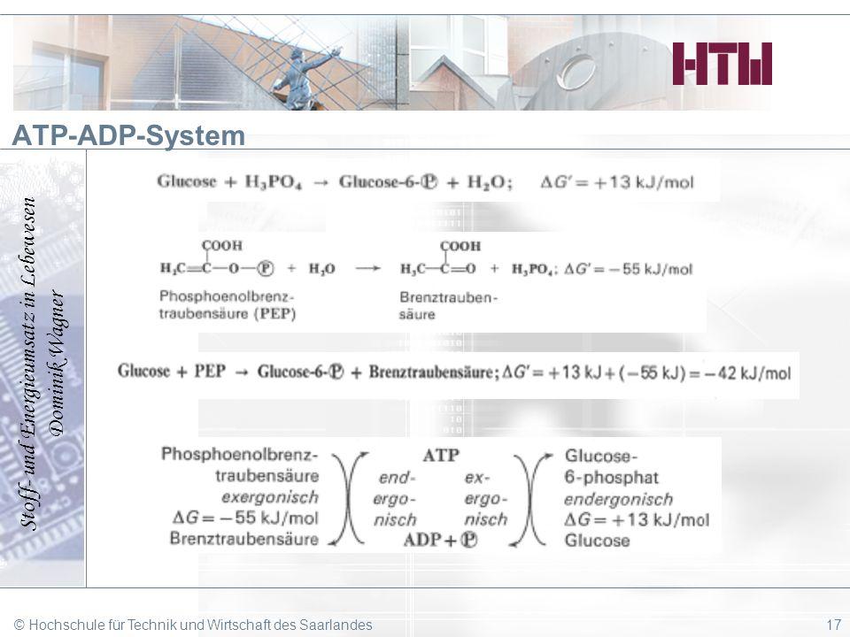 Stoff- und Energieumsatz in Lebewesen Dominik Wagner © Hochschule für Technik und Wirtschaft des Saarlandes17 ATP-ADP-System