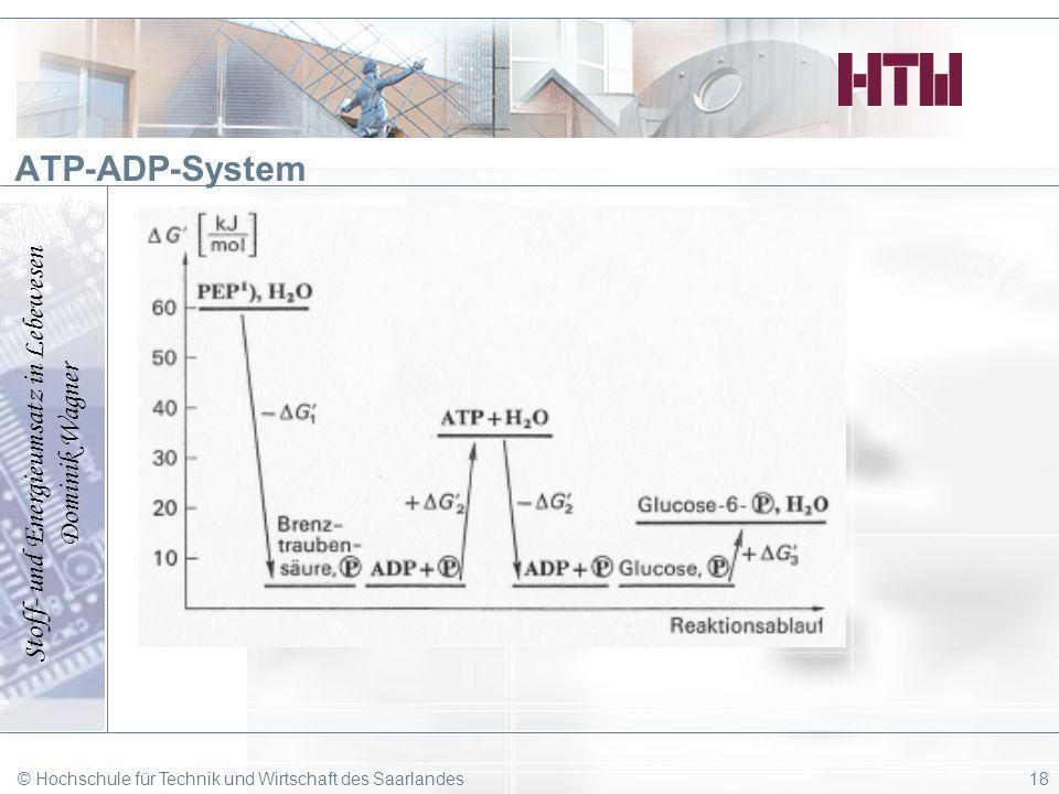 Stoff- und Energieumsatz in Lebewesen Dominik Wagner © Hochschule für Technik und Wirtschaft des Saarlandes18 ATP-ADP-System