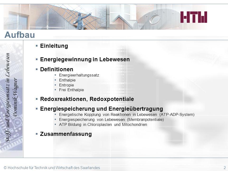 Stoff- und Energieumsatz in Lebewesen Dominik Wagner © Hochschule für Technik und Wirtschaft des Saarlandes2 Aufbau Einleitung Energiegewinnung in Leb