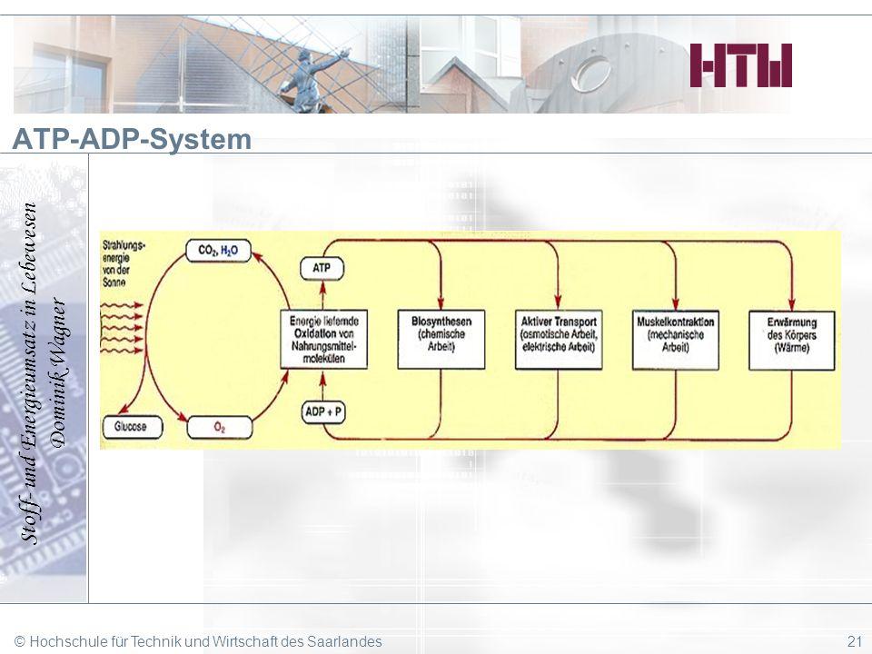 Stoff- und Energieumsatz in Lebewesen Dominik Wagner © Hochschule für Technik und Wirtschaft des Saarlandes21 ATP-ADP-System