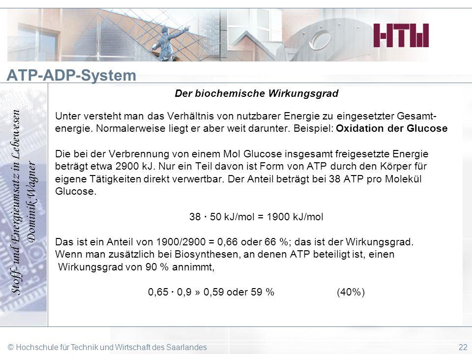 Stoff- und Energieumsatz in Lebewesen Dominik Wagner © Hochschule für Technik und Wirtschaft des Saarlandes22 ATP-ADP-System Der biochemische Wirkungs