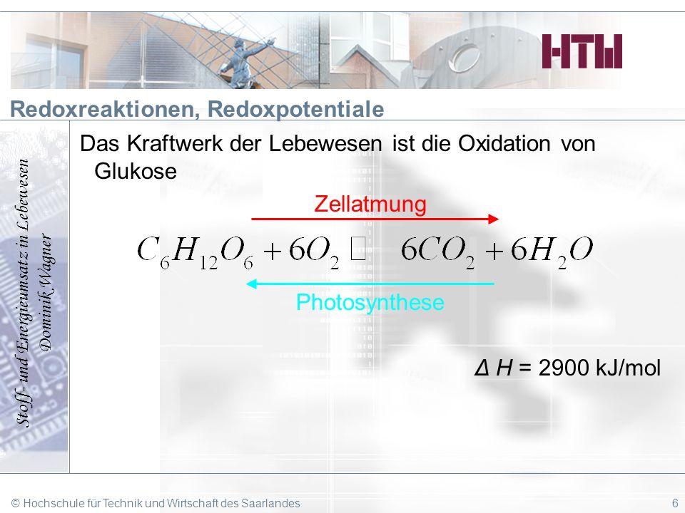 Stoff- und Energieumsatz in Lebewesen Dominik Wagner © Hochschule für Technik und Wirtschaft des Saarlandes6 Redoxreaktionen, Redoxpotentiale Das Kraf