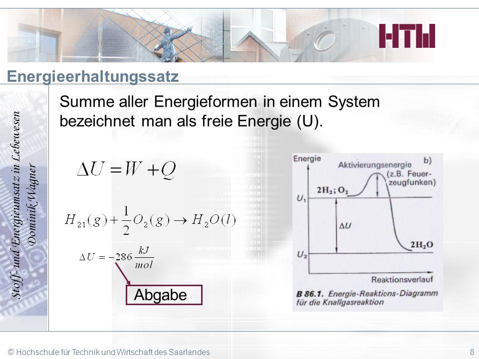 Stoff- und Energieumsatz in Lebewesen Dominik Wagner © Hochschule für Technik und Wirtschaft des Saarlandes8 Energieerhaltungssatz Summe aller Energie