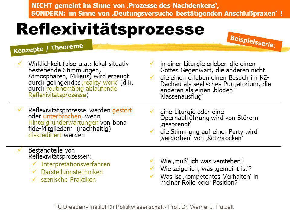 TU Dresden - Institut für Politikwissenschaft - Prof. Dr. Werner J. Patzelt Reflexivitätsprozesse Wirklichkeit (also u.a.: lokal-situativ bestehende S