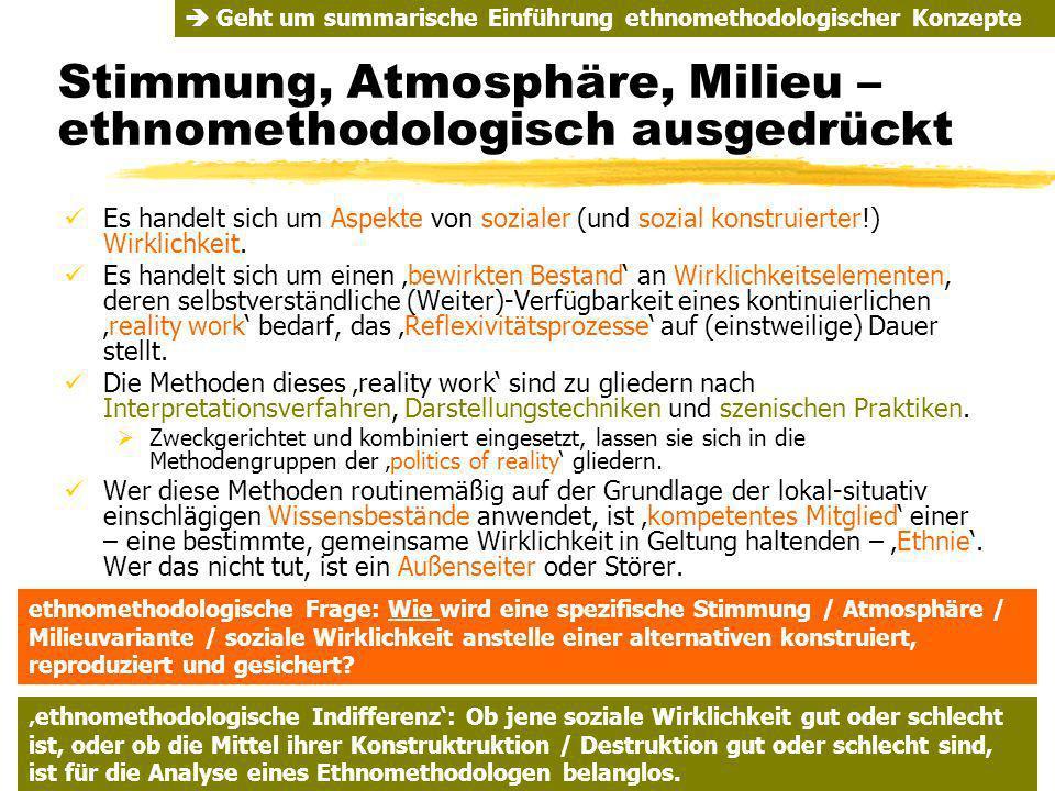 TU Dresden - Institut für Politikwissenschaft - Prof. Dr. Werner J. Patzelt Stimmung, Atmosphäre, Milieu – ethnomethodologisch ausgedrückt Es handelt