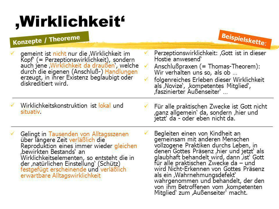 TU Dresden - Institut für Politikwissenschaft - Prof. Dr. Werner J. Patzelt Wirklichkeit gemeint ist nicht nur die Wirklichkeit im Kopf (= Perzeptions
