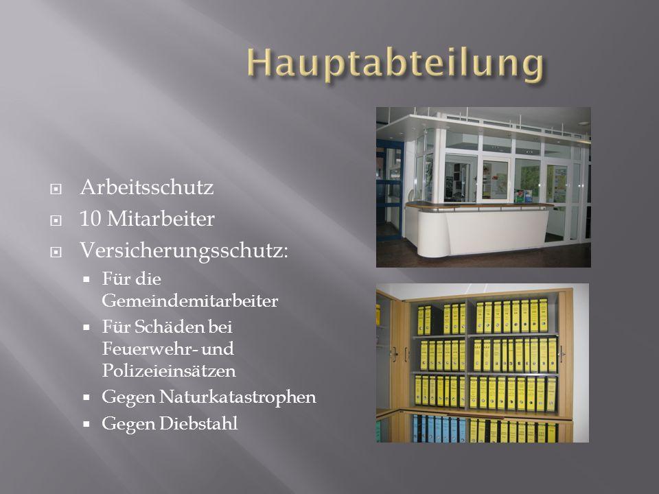 HauptamtAmt für Wirtschaft und Finanzen Ordnungs-und Sozialamt Bau- und PlanungsamtAmt für Gebäudewirtschaft und Liegenschaftsunter- haltung Hauptab- teilung Abteilung Haushalt und Finanzen Abt.