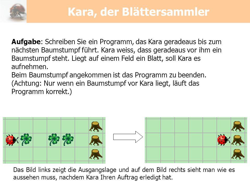 Kara, der Blättersammler Aufgabe: Schreiben Sie ein Programm, das Kara geradeaus bis zum nächsten Baumstumpf führt. Kara weiss, dass geradeaus vor ihm