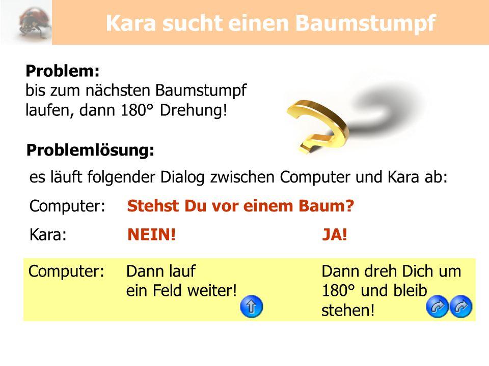 Kara sucht einen Baumstumpf Problem: bis zum nächsten Baumstumpf laufen, dann 180° Drehung! es läuft folgender Dialog zwischen Computer und Kara ab: C