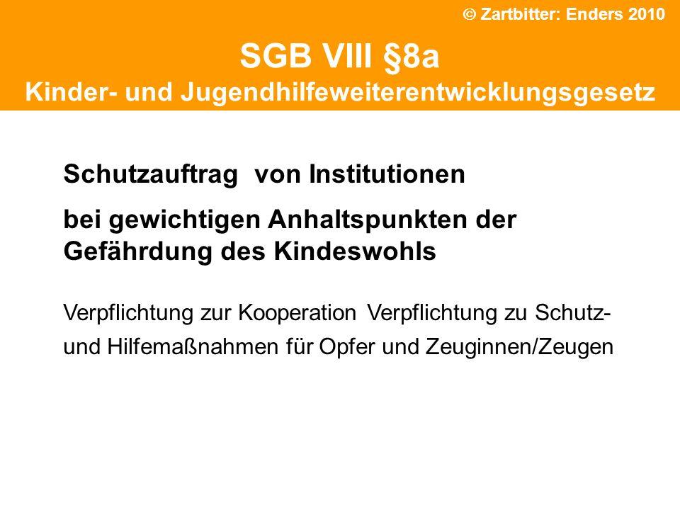 Politische Grundhaltung SGB VIII §8a Kinder- und Jugendhilfeweiterentwicklungsgesetz Schutzauftrag von Institutionen bei gewichtigen Anhaltspunkten de