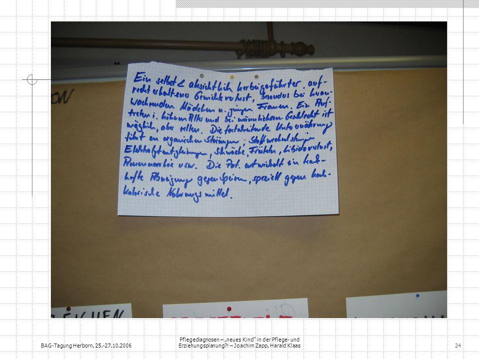 BAG-Tagung Herborn, 25.-27.10.2006 Pflegediagnosen – neues Kind in der Pflege- und Erziehungsplanung?! – Joachim Zapp, Harald Klaas24