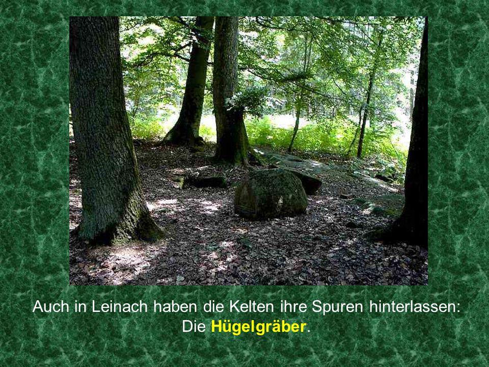 Auch in Leinach haben die Kelten ihre Spuren hinterlassen: Die Hügelgräber.